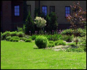 ogród przy klasztorze w Krakowie