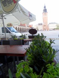 zieleń przy restauracji Kraków